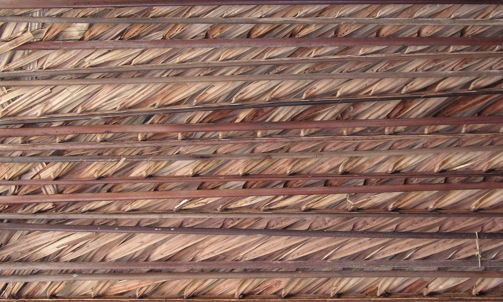 palm_roof_texture_250001.JPG