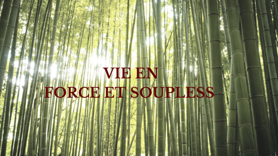 La Vie EnFORCE et SOUPLESS.png