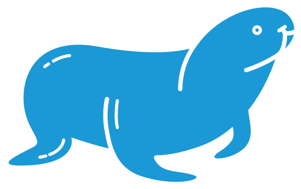kennebunkport_harbor_seal.png