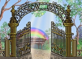 Gate_Pic_100213.jpg