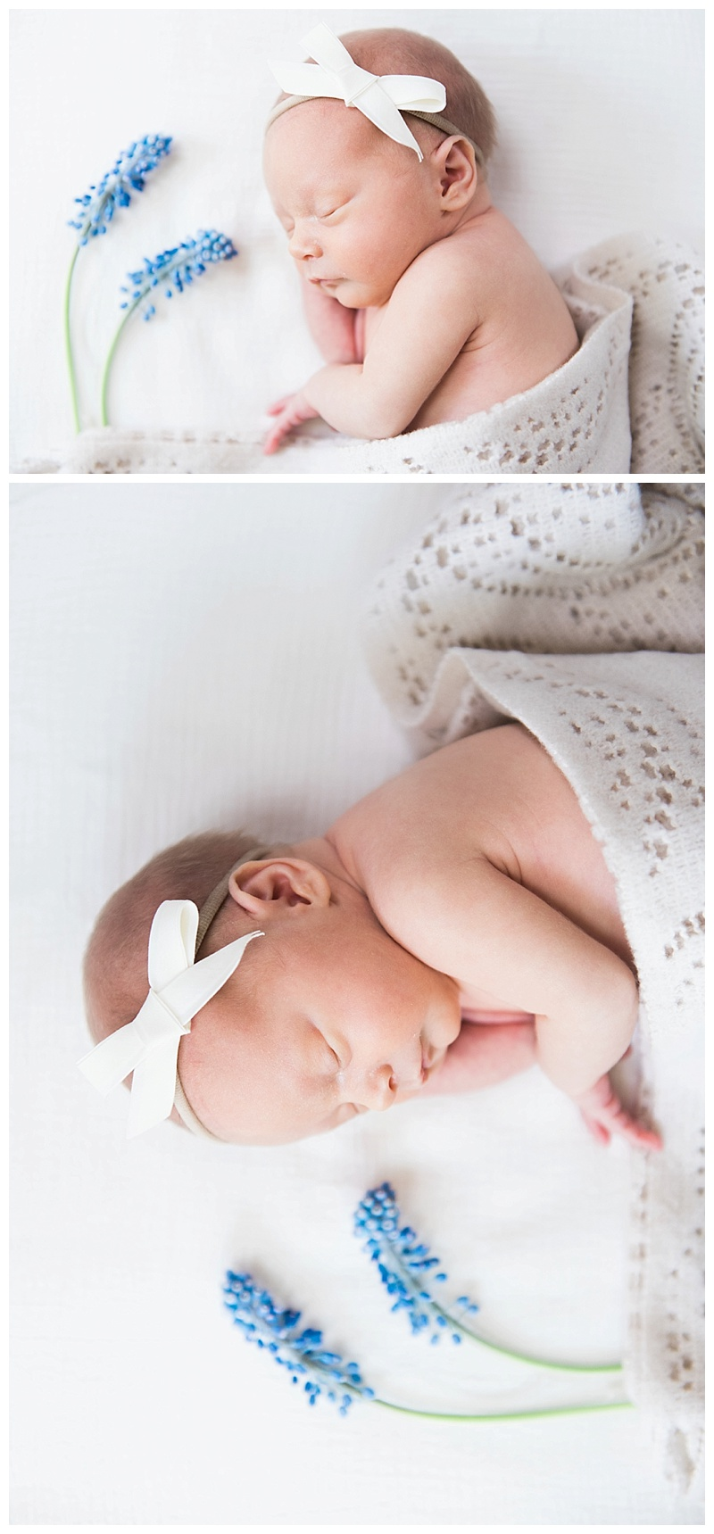 14Whitney Marie Photography. Austin Newborn Photographer.jpg