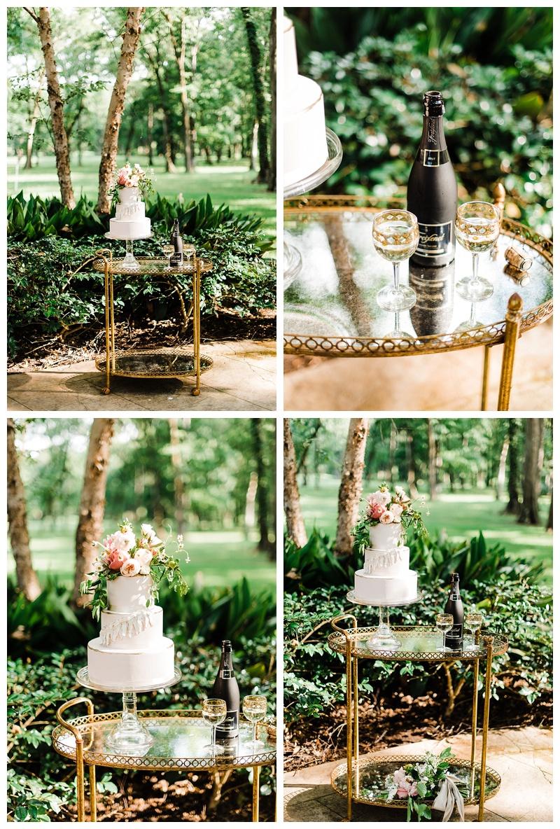 2whitneykrenek.com Wedding Photographer . Dallas, Tx Shreveport, LA.jpg