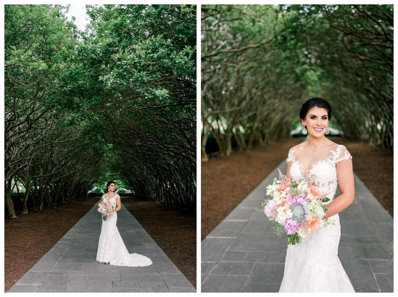 www.whitneykrenek.com  Dallas Wedding Photographer. Dallas Arboretum & Botanical Gardens 6.jpg