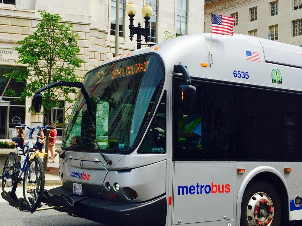 metrobus2.jpg