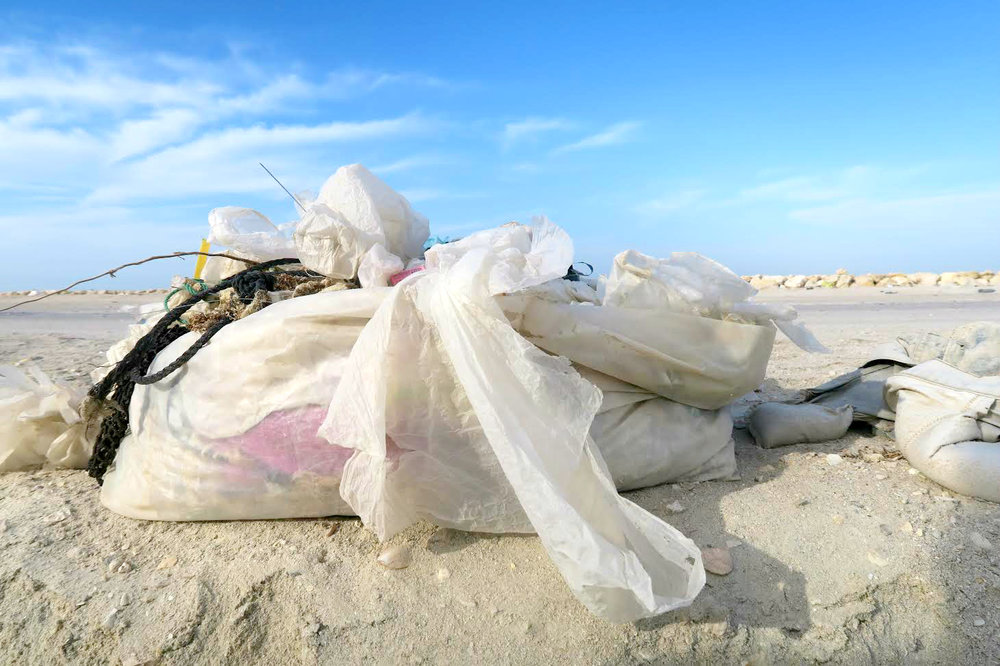 Life In Plastic Ain't So Fantastic | Marine Debris