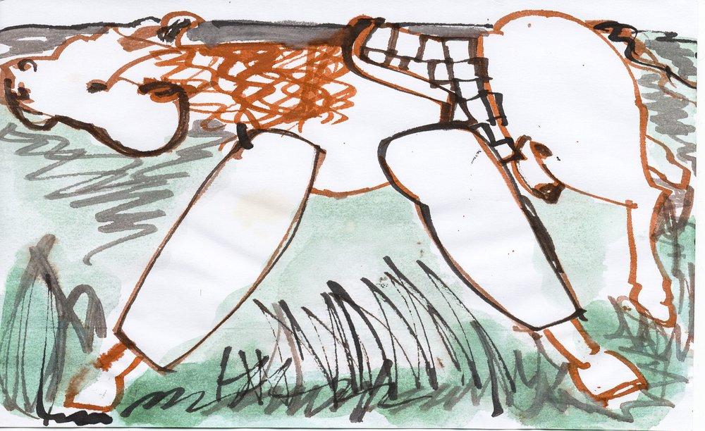 drawing_2012_horse (11 of 20).jpg