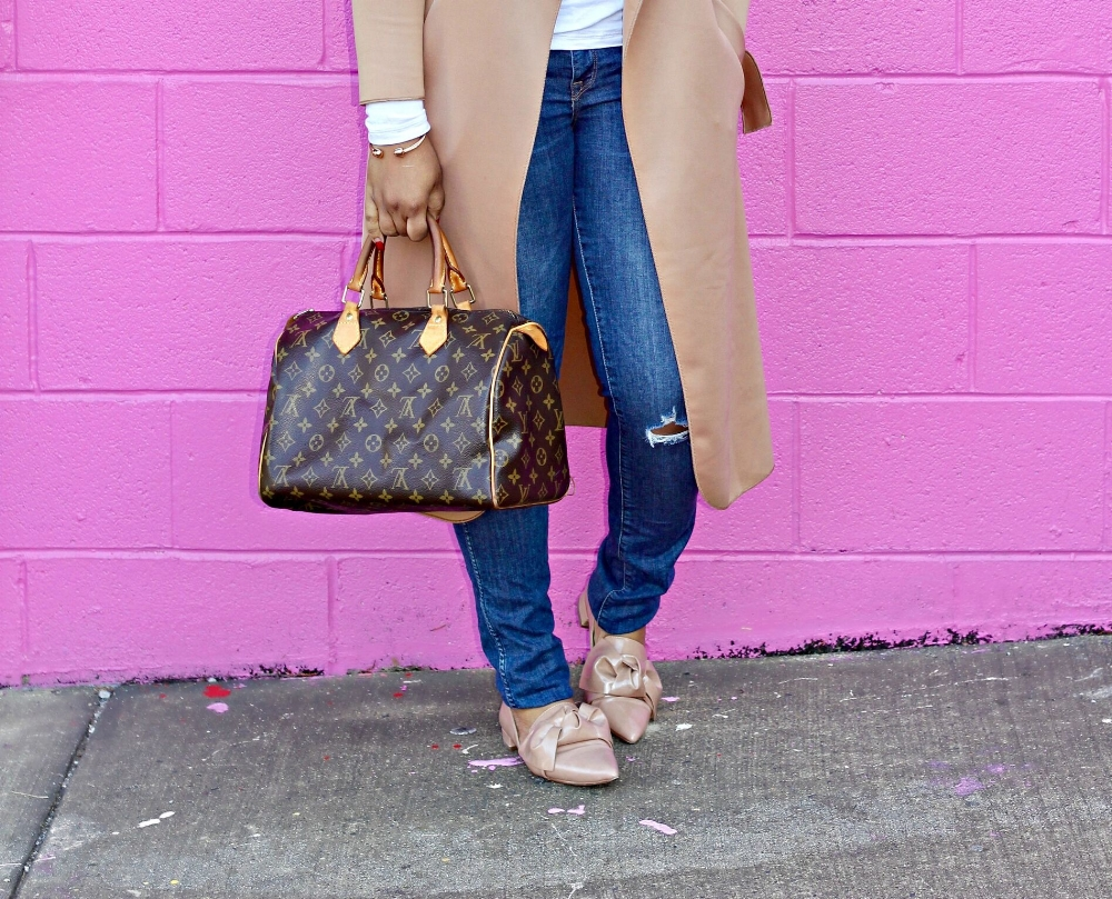 Bow Pumps and LV Speedy Bag