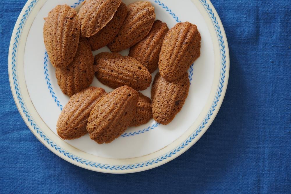 honey & chocolate madeleines.jpg