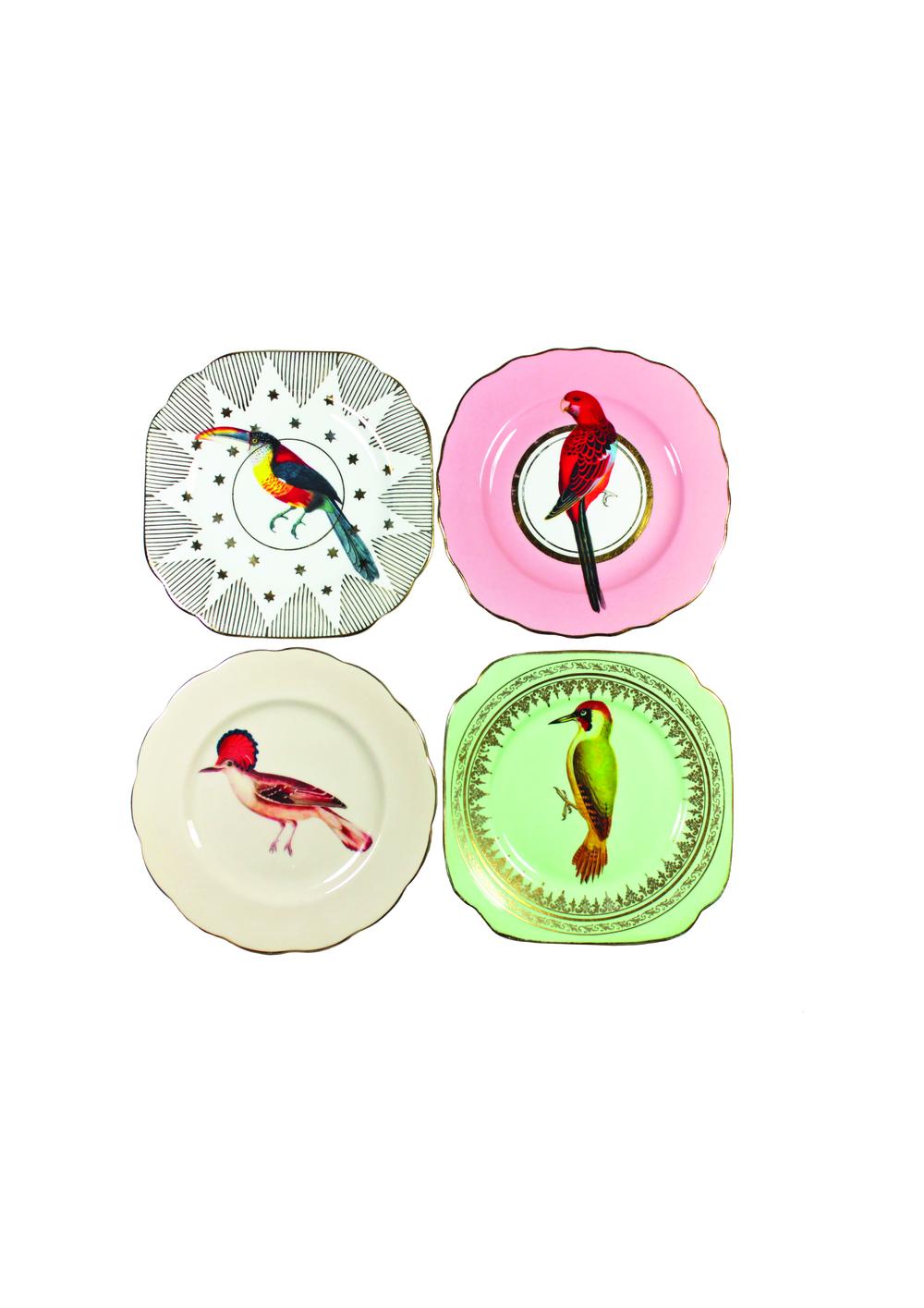 YVONNE ELLEN BIRDS2.jpg