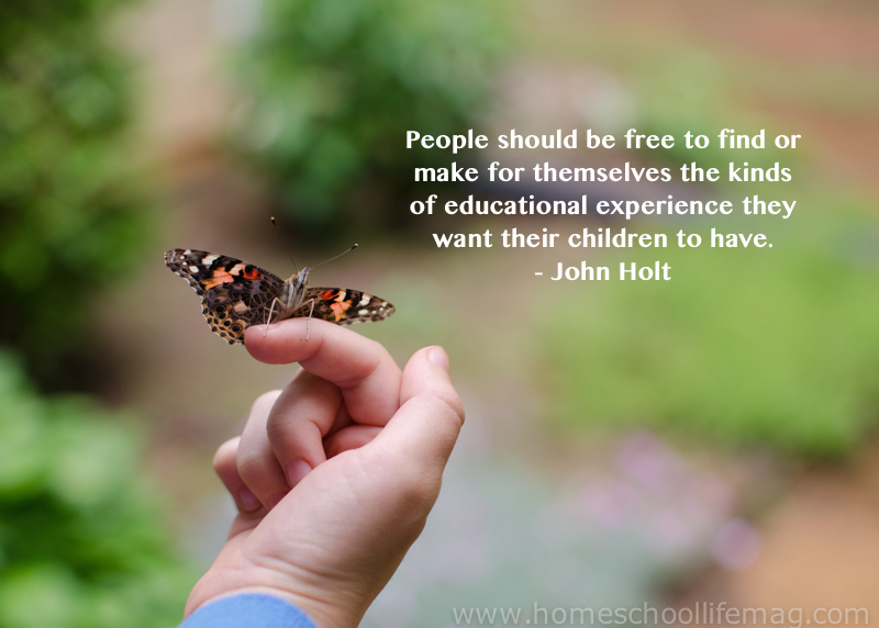 butterfly-on-childs-hand-John-Holt-quote.jpg
