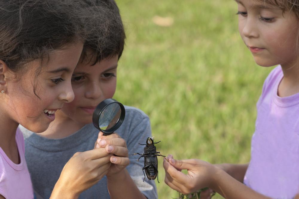 kids-with-bugs.jpg
