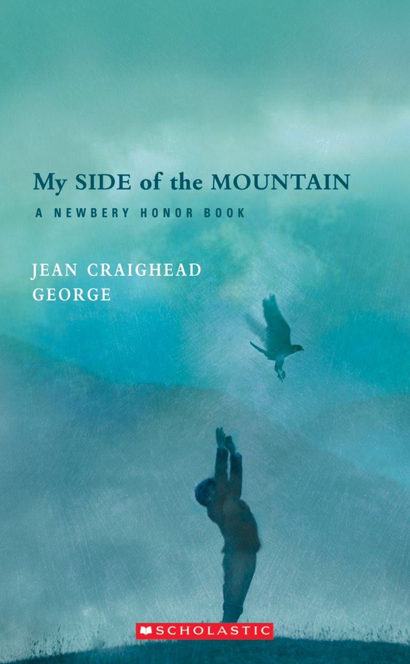 essay on my side of the mountain As of now there are four sequels to my side of the mountain: the direct sequel on the far side of the mountain (with no relation to gary larson's comic), and the three sequels told from the perspective of falcons, frightful's mountain, frightful's daughter, and frightful's daughter meets the baron weasel.