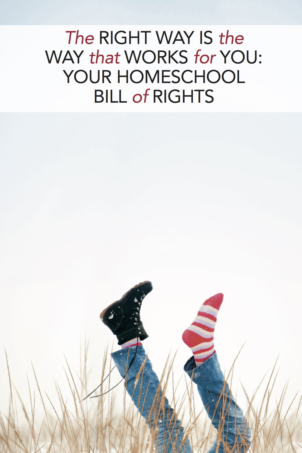 Your Homeschool Bill of Rights: There is no single right way to homeschool. What works for your family is right for your family—and if that right thing changes from year to year (or month to month), that's okay.