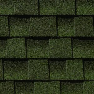 Evergreen Shingles