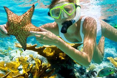 free-photo-snorkeling.jpg
