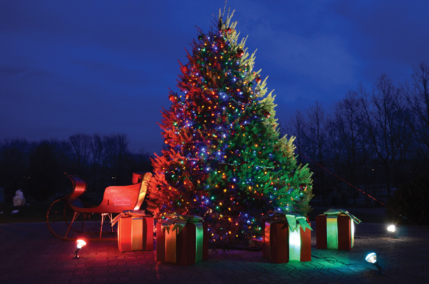 TreeLighting.jpg