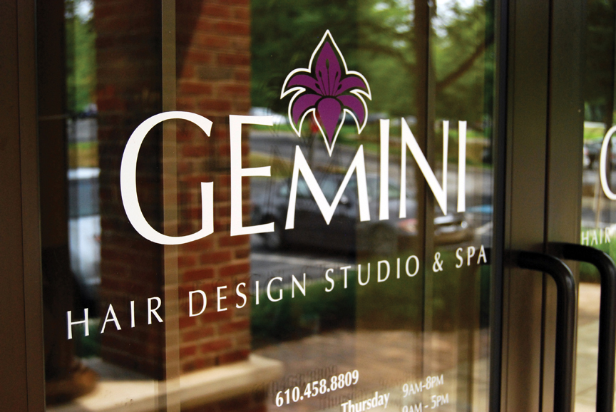Gemini_Window.jpg