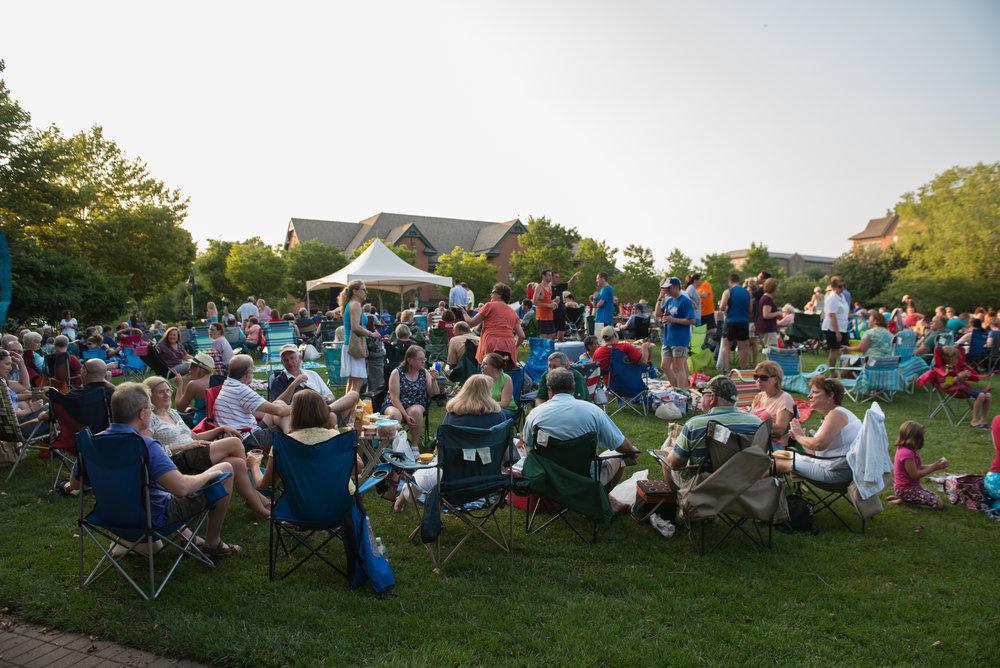 Concert Crowd 2014(39).jpg