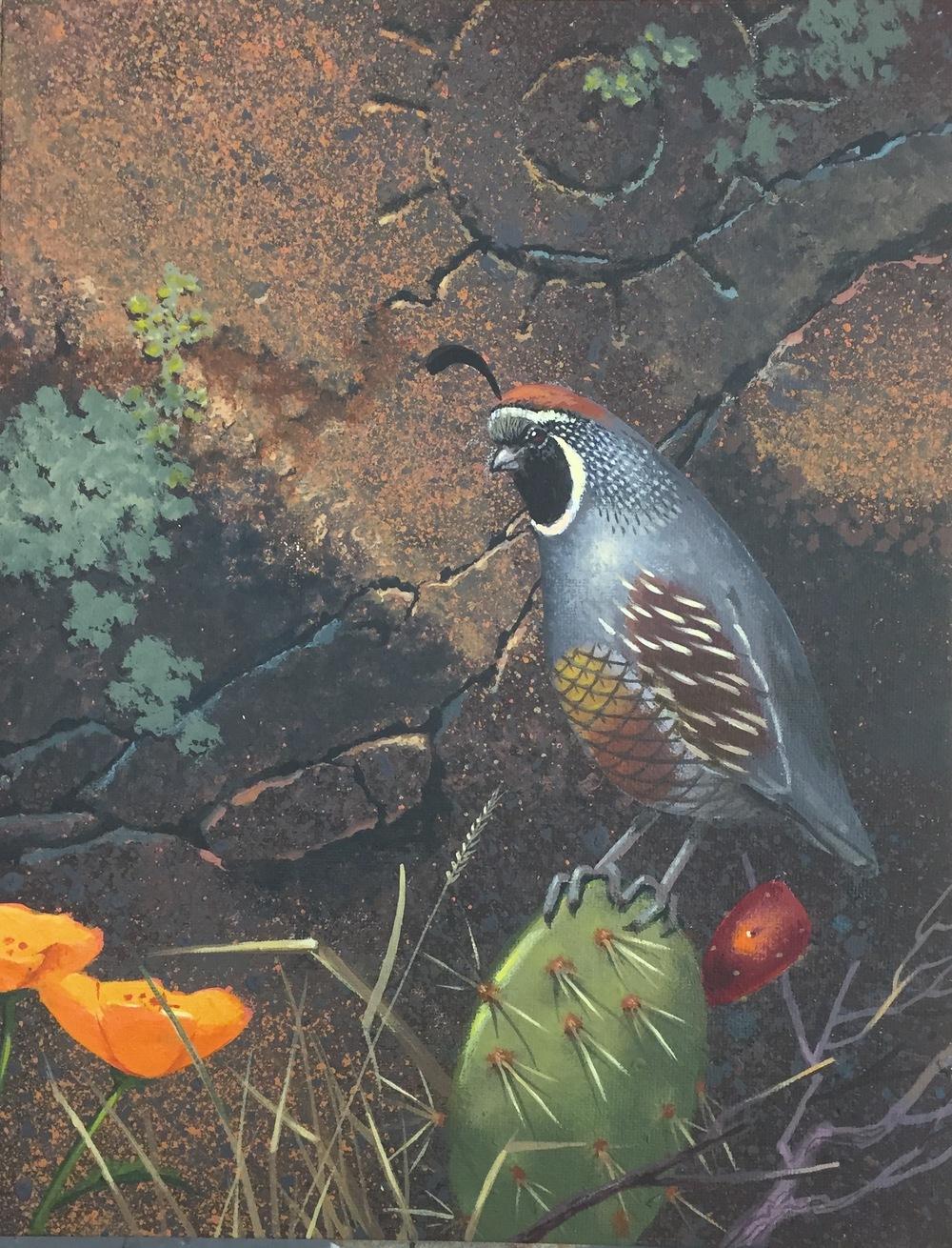 work quail 4.jpg