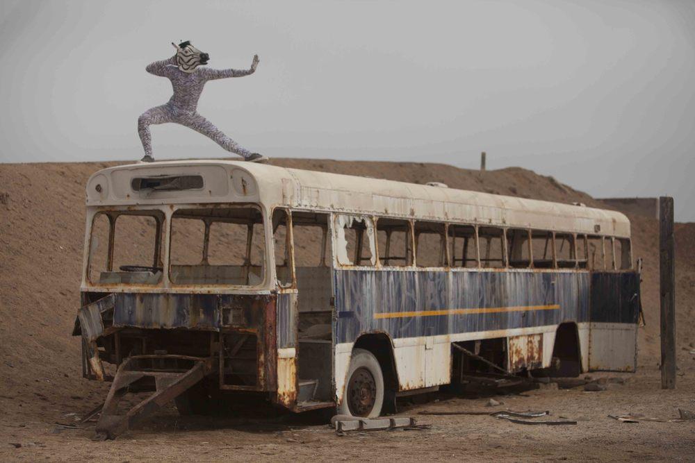 zebrabuspose.JPG