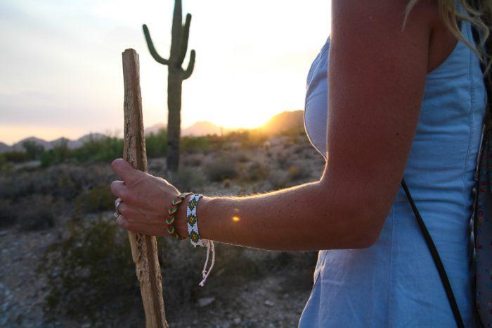 Cactus-700x466.jpg