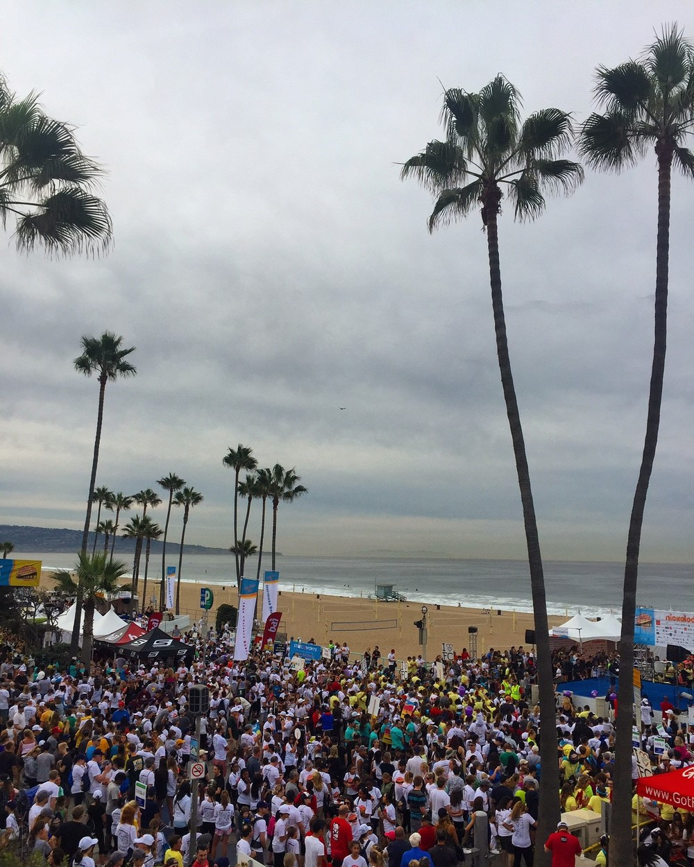 Participants in the 2015 Skechers Pier to Pier Friendship Walk helped to raise a record $1.4 million dollars.