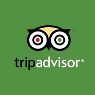 Copy of TripAdvisor Logo