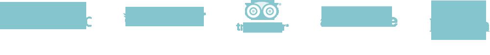 Logo-ads6.png