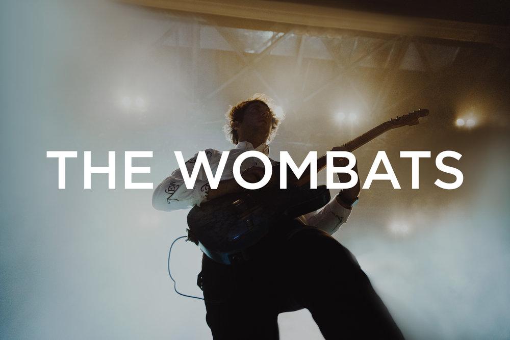 Wombats Thumbnail.jpg