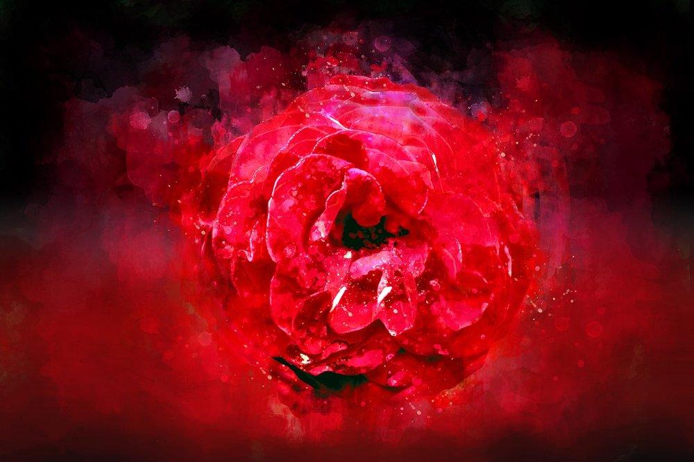 red-3158981_1280.jpg