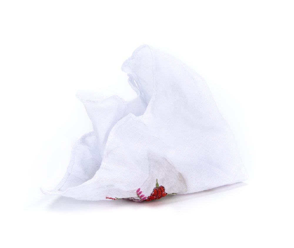 WORLD-LEADER-USED TISSUES - A sneeze is evidence that no one, not even the world's most powerful leader, is always in control. And everyone has the ability to lose it at any time.