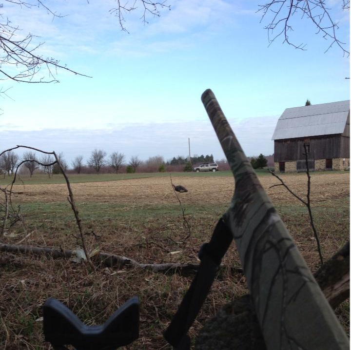 View from a turkey blind.jpg