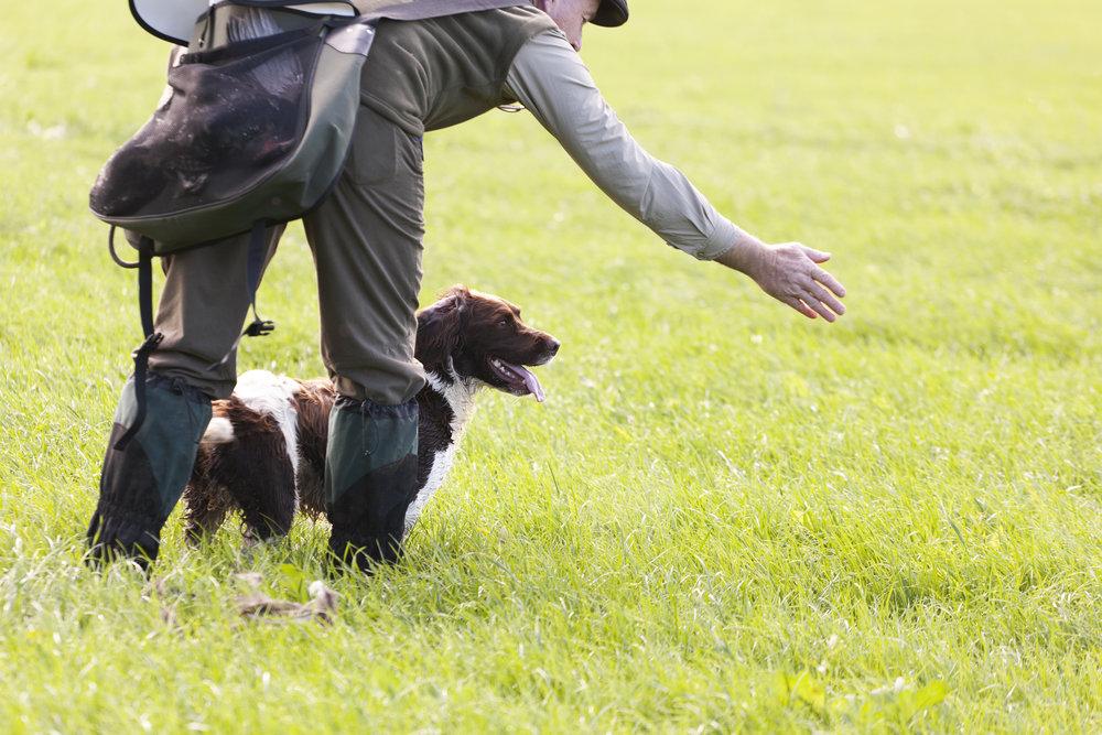 Gamekeeper-with-his-dog-170958784_4860x3240.jpeg