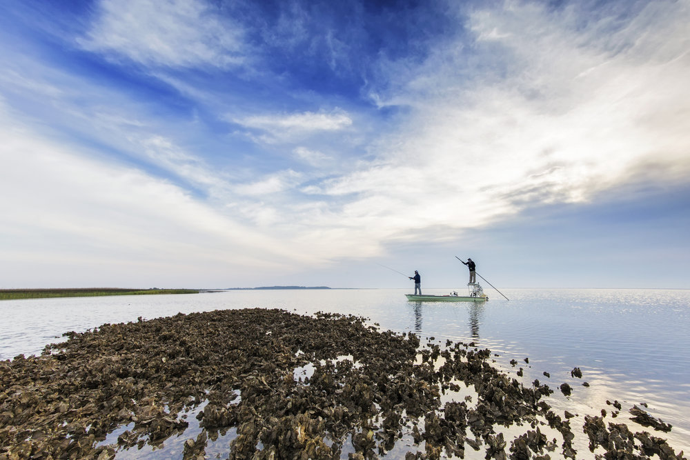 Flyfishing-at-coast-in-South-Carolina-USA-539220644_5115x3410.jpeg