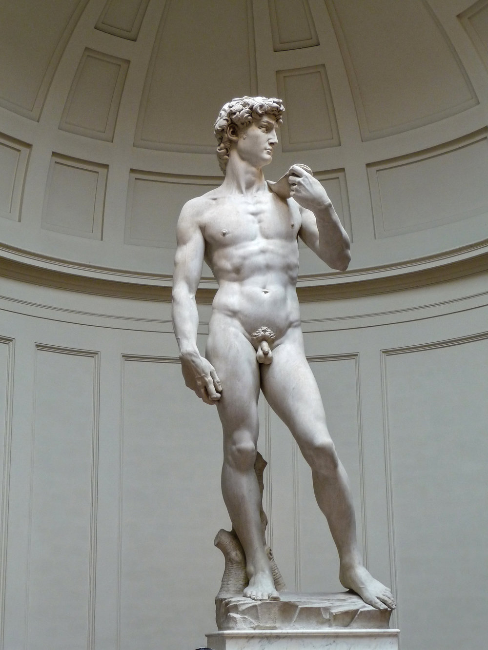 Michelangelo's   David  . Photograph by  Jörg Bittner Unna , CC BY 3.0.