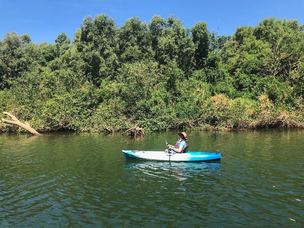 kayaking.jpeg
