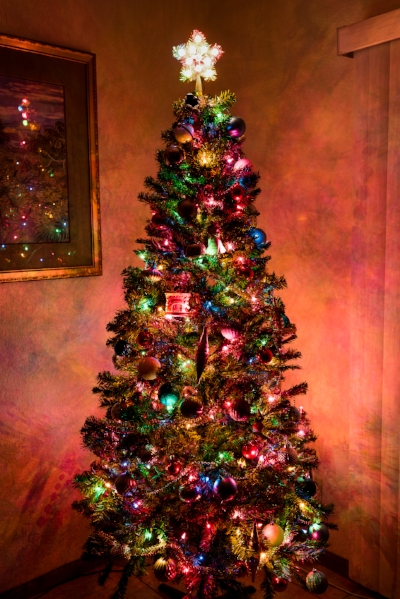 It's fun to turn off all the other lights and see how much our tree really glows.