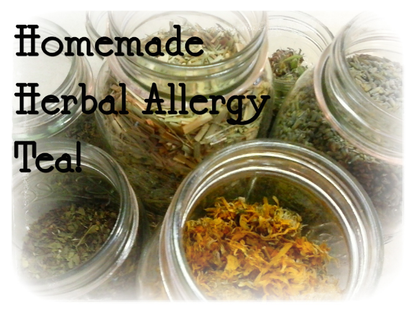 homemade herbal allergy tea
