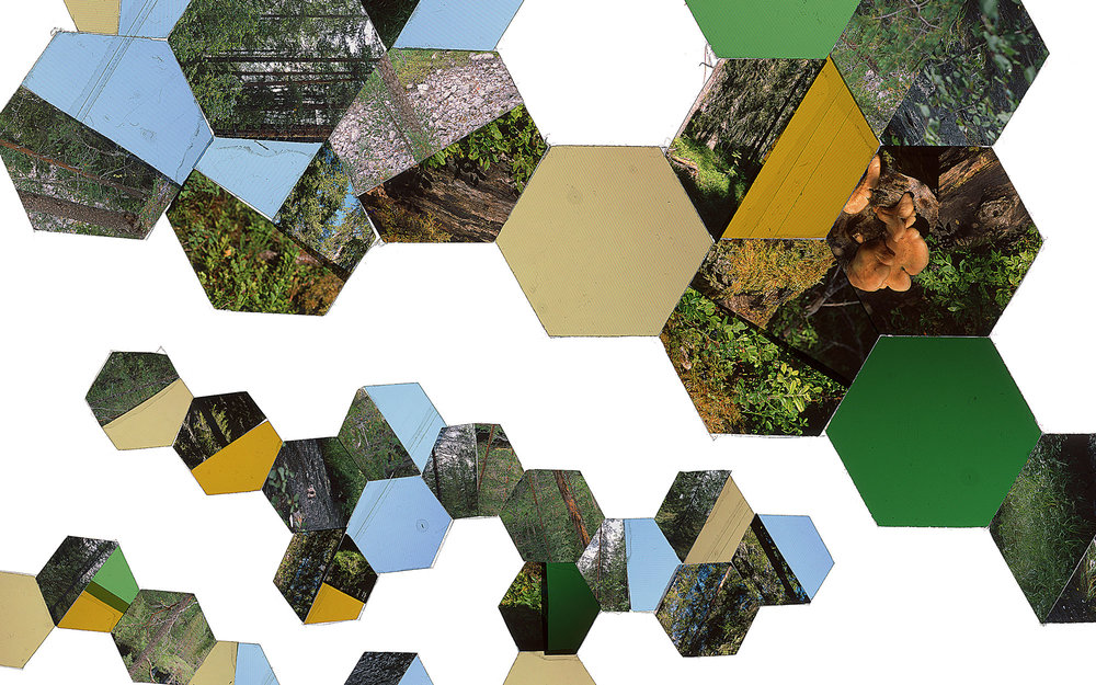 "Hexagon Derivative 6 • 30""x51"" [76cm x 130cm] • C-print from color transparency composition"