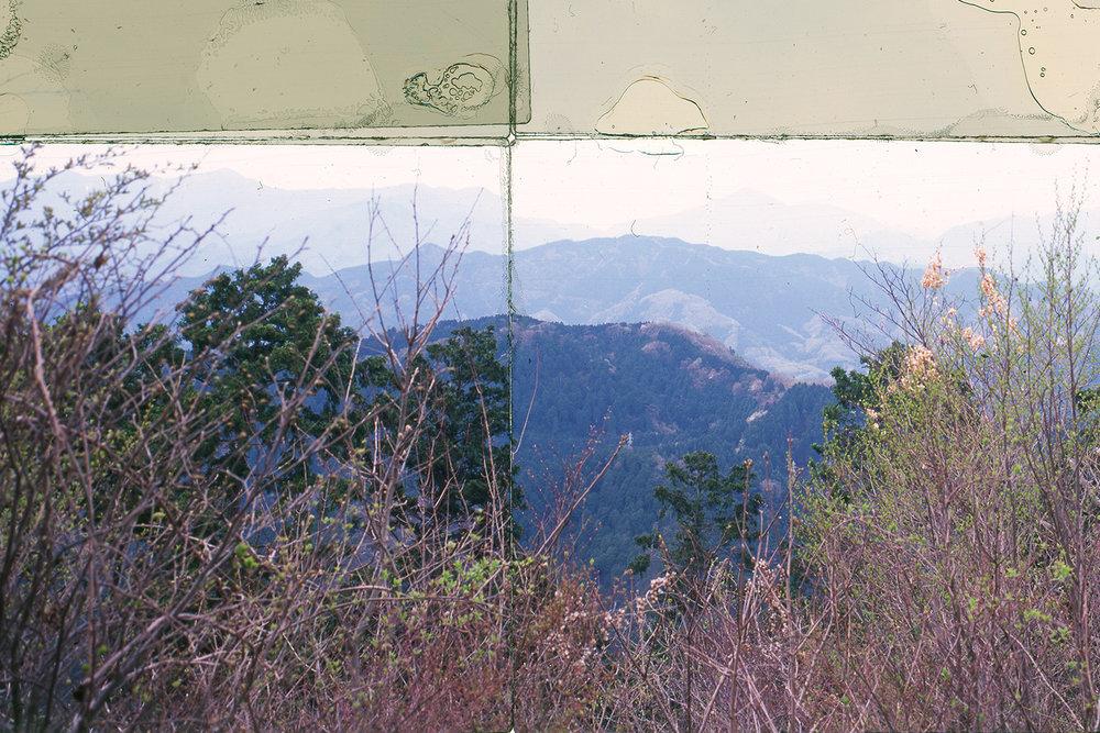 DETAIL,  MT. TAKAO, JAPAN, 1