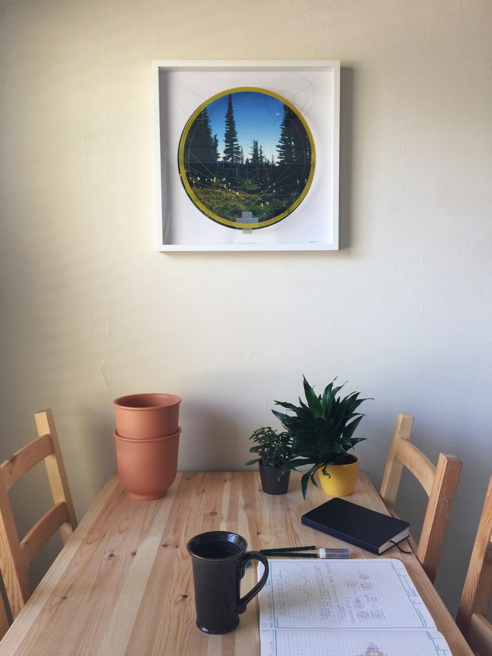 Rainier Botany 3 on wall.jpg