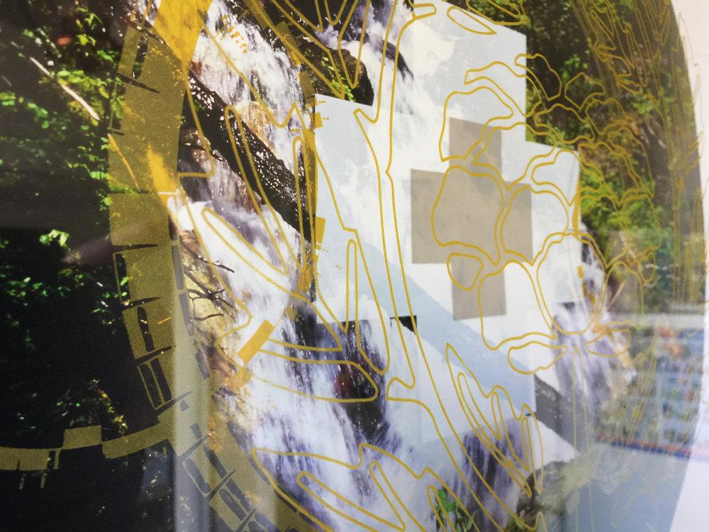 Rainier Botany 9 detail.jpg