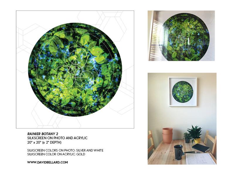 Rainier Botany Proposal print version4.jpg