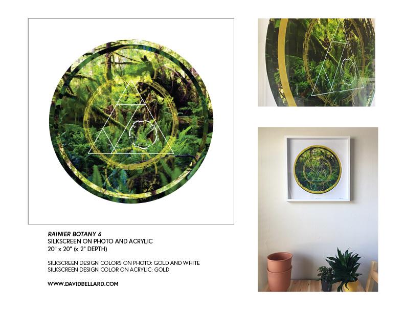 Rainier Botany Proposal print version8.jpg
