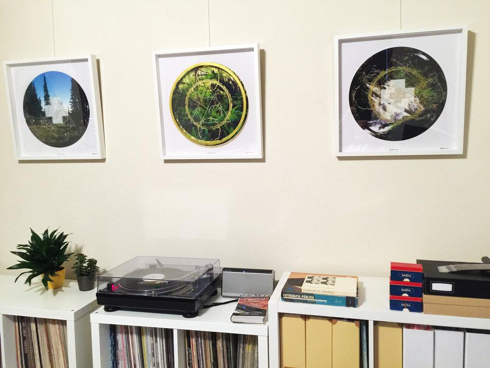 Rainier Botany trio on wall.jpg