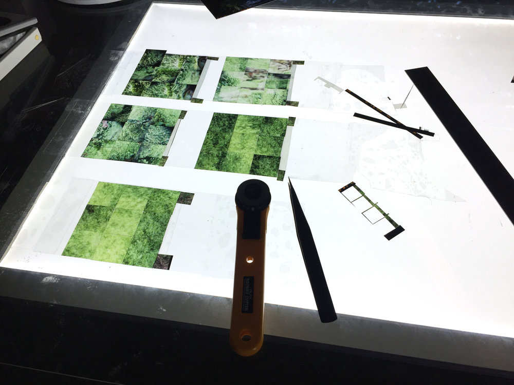 "Creating the ""Nature Victus"" series on my large light table. There is nothing more glorious that working on the brilliance of light. Just kidding. It's actually hard to work for long periods of time on a 3ft long light table - it gets hard on the eyes and the brain and I have to take a break every 2 hours. The ""Nature Victus"" series is in the portfolio section."