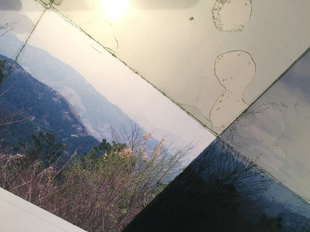 "Detail, Mt. Takao, 3  , Transparency film printed at 30""x30"", archival pigment on fuji metallic"