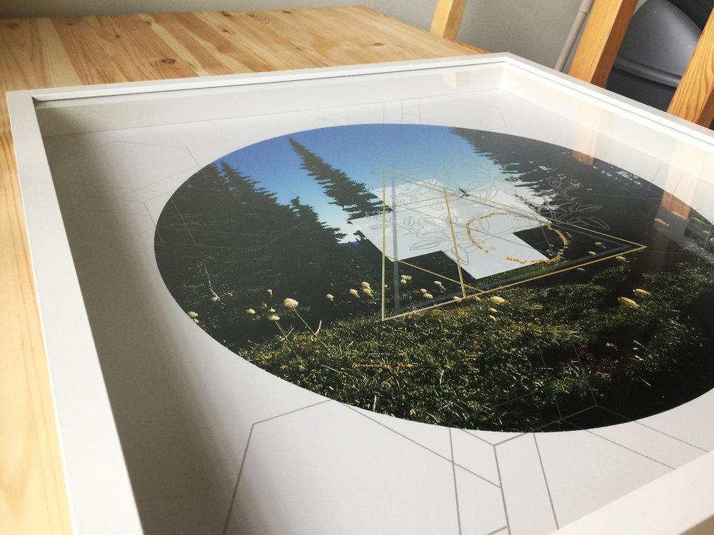 Rainier-Botany-10-detail-table-6.jpg