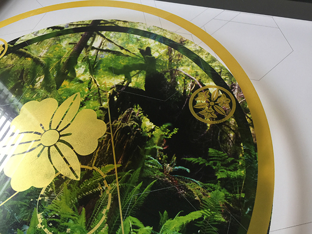 Rainier-Botany-new-11-7.jpg