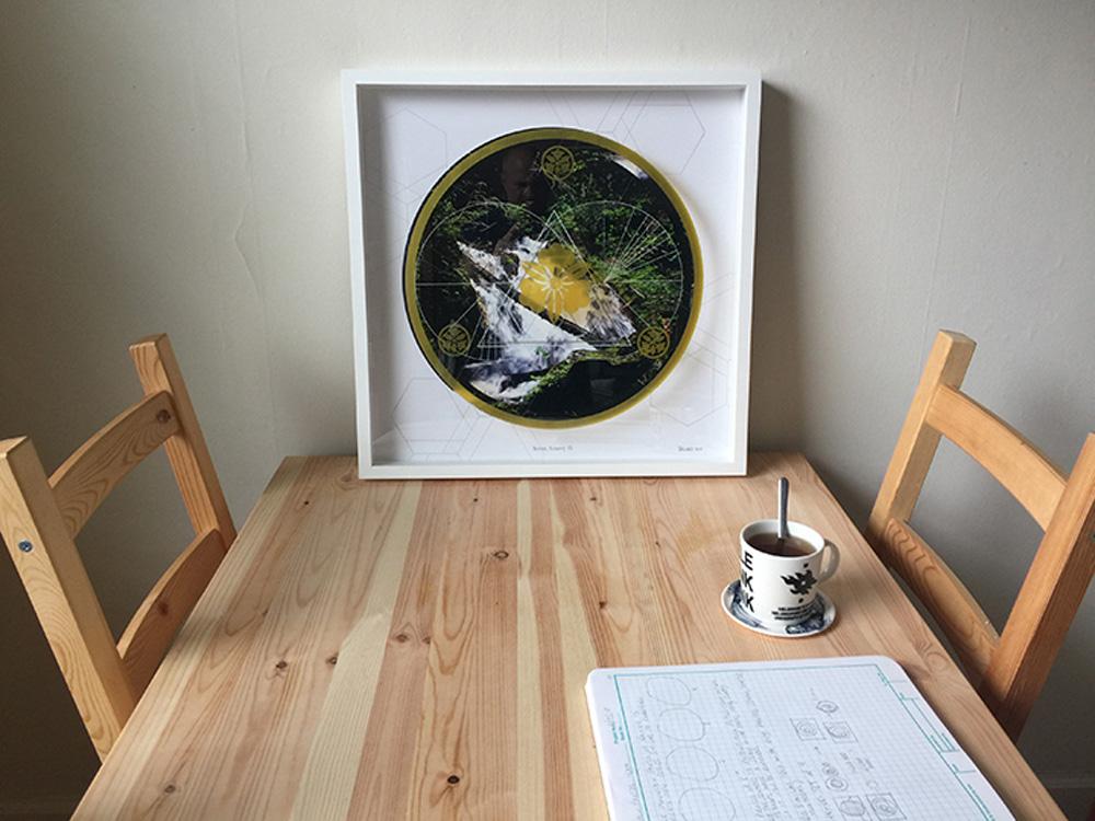 Rainier-Botany-new-12-3.jpg